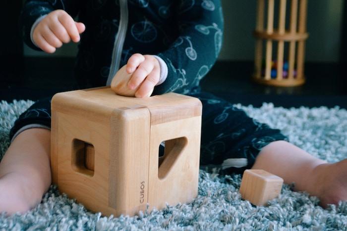 Montessori inspired all hardwood sorting toy