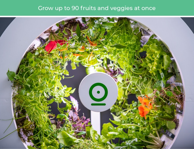 OGarden Smart:Indoor Garden of 90 Fruits & Veggies | Indiegogo