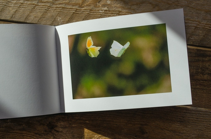The heart and soul of the book are in the prints, single images spaciously set to the right of double-spreads, allowing the eye to rest easily on the image presented until the gaze is satisfied.