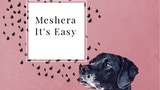 Click here to view Meshera App - the next step in FinTech advisors