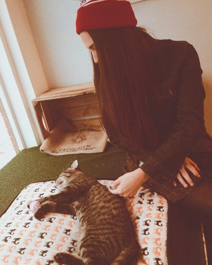 Eat, Purr, Love Cat Café hang with AP