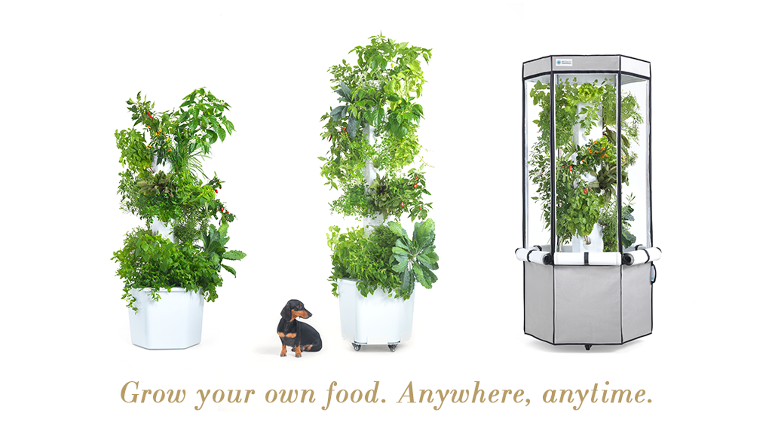 Grow anything all year round with your own urban farm right in your apartment, balcony, rooftop terrace or backyard!