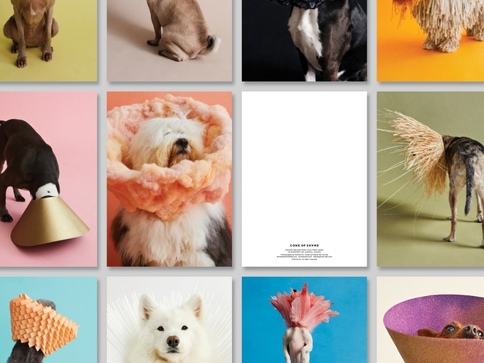 The back of each notecard will be blank, with a few details about each dog at the bottom.