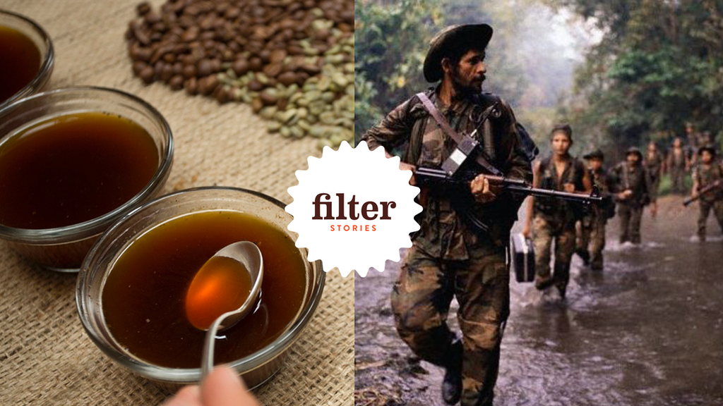 Filter Stories: you've heard the story, now taste the coffee project video thumbnail