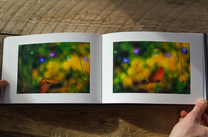 Diptychs are displayed across a double-spread.