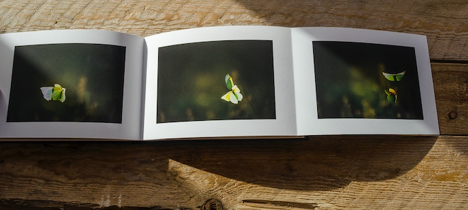 Two sets of triptychs are bound into the book. The third image folds out from the gutter - a perfect solution.