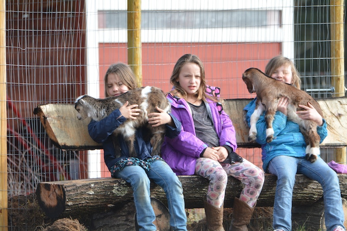 The Mann Triplets (in the same order as the baby picture above) plus goats, Pumpkin & Bambi