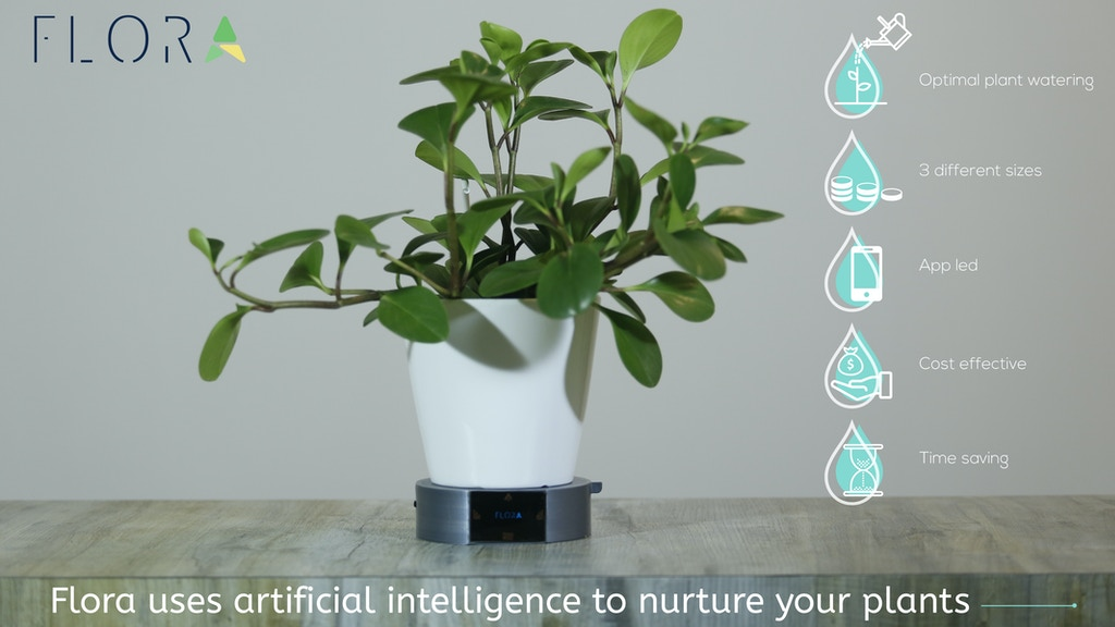 Flora – Your intelligent plant watering ally