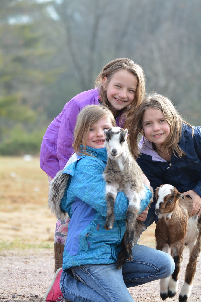 The Triplets with our Goats. (Credit: Mary Klumb)