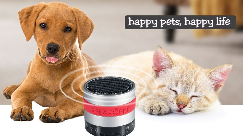 RelaxoPet World's First Deep Relaxation System for all Pets project video thumbnail