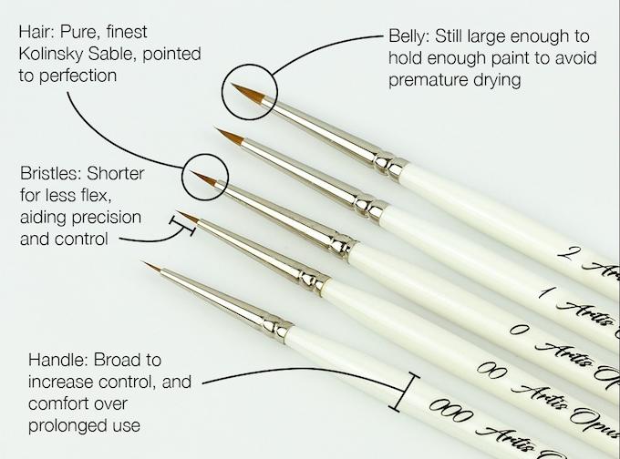 Brush Anatomy
