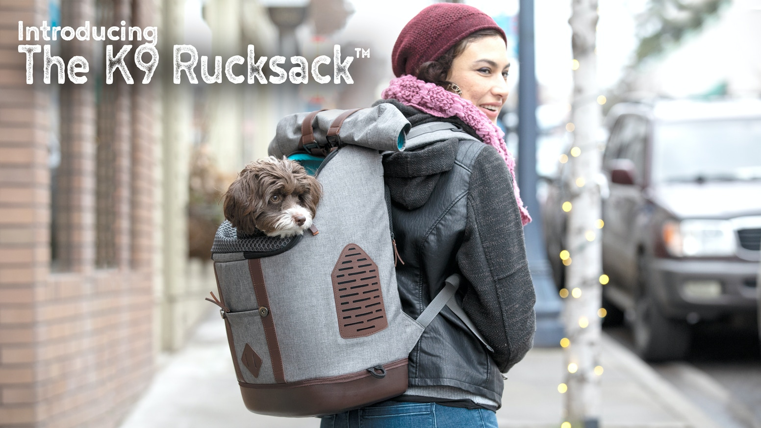 Dog Carrier Redefined - A backpack style pet carrier with modern appeal and total function.