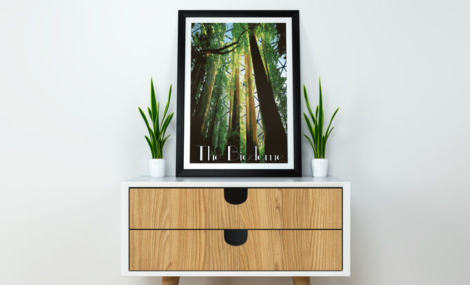 Looks great on any wall!