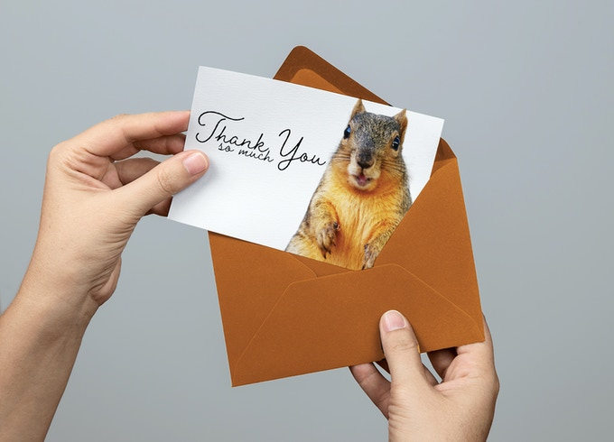UT-Squirrel Thank You Card!
