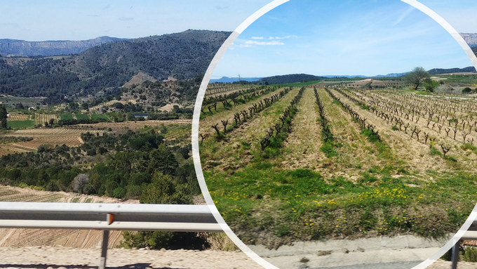 Sneak Peek of my trip in Tarragona!