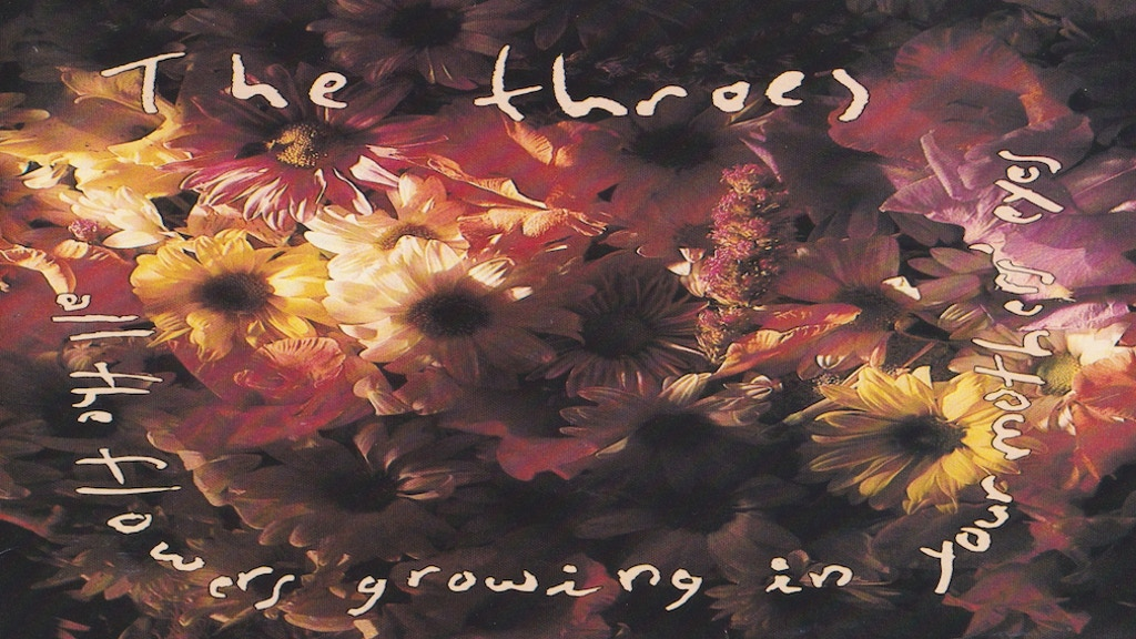 """The Throes """"All The Flowers Growing In Your Mother's Eyes"""" project video thumbnail"""