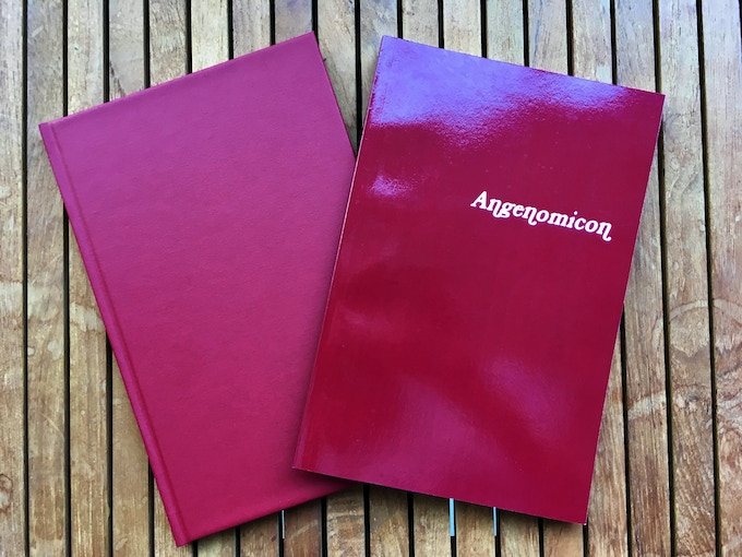 Hardcover and Softcover variants of the Angenomicon grimoire