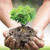 5 Billion Trees