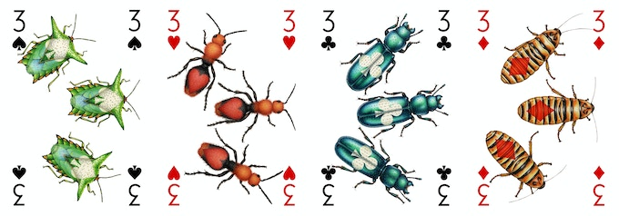 All the Insecta deck 3s