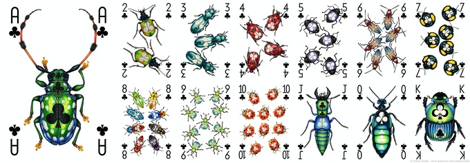 All of the Clubs card designs in the Insecta deck