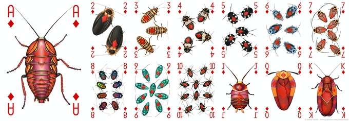 All of the Diamonds designs in the Insecta deck
