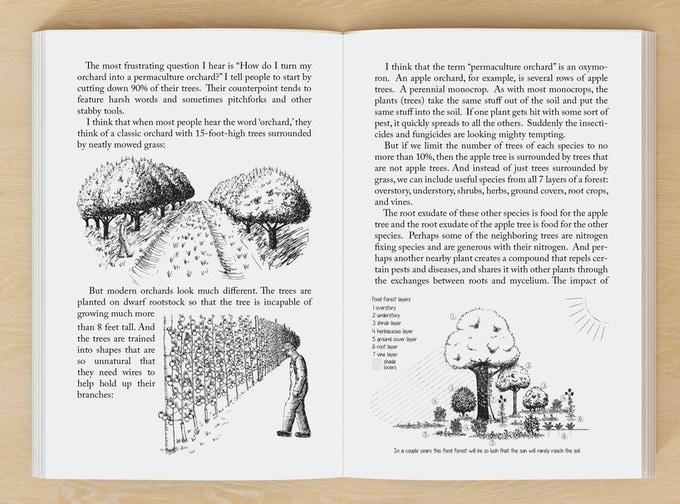 a sample of the delicious illustrations by Tracy Wandling