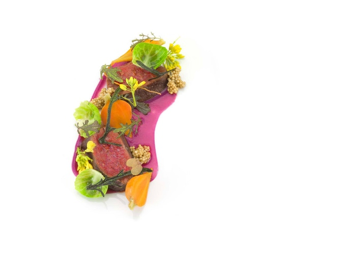 Venison with red cabbage purée, carrots, mustard flowers, and seeds