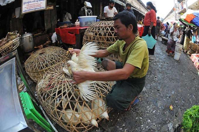 Yangon Morning Market