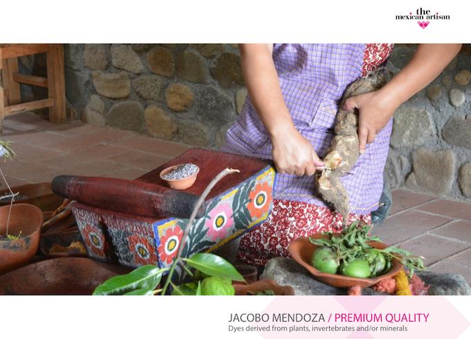 Jacobo and Jacinta's Workshop