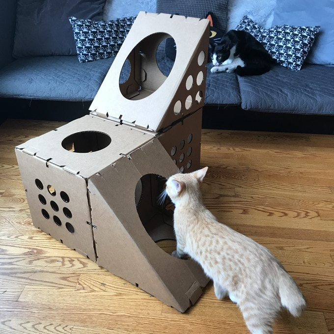 Image result for cat beds box