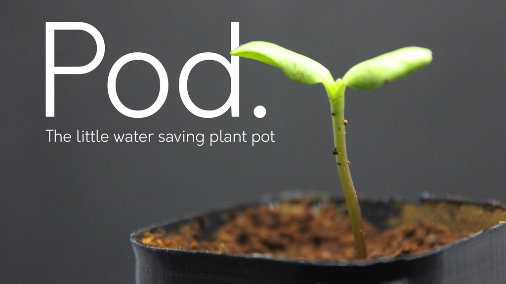 Pod-The little plant pot that saves water.