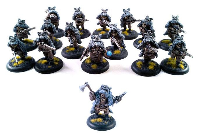 the wolfs warband, 1 magician, 1 leader and 14 troopers