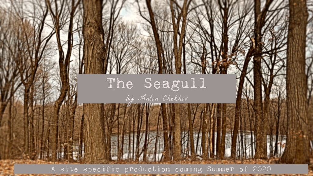 """A Site-specific """"The Seagull"""" project video thumbnail"""