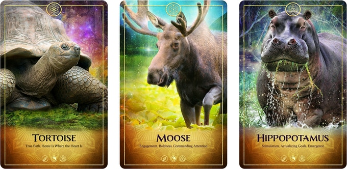 Bonus Cards from The Ark Animal Tarot & Oracle Deck