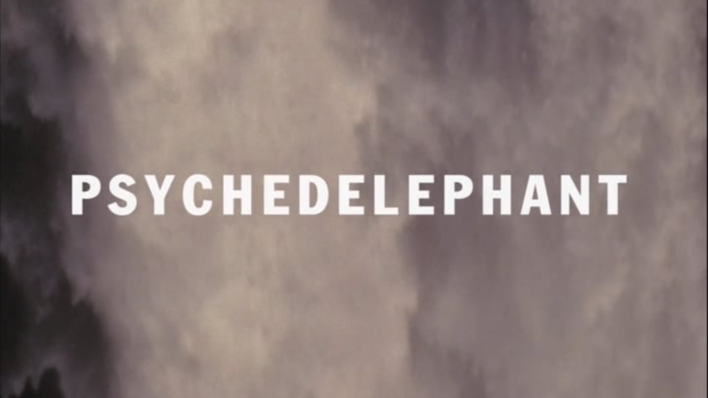 Psychedelephant - A New LP project video thumbnail