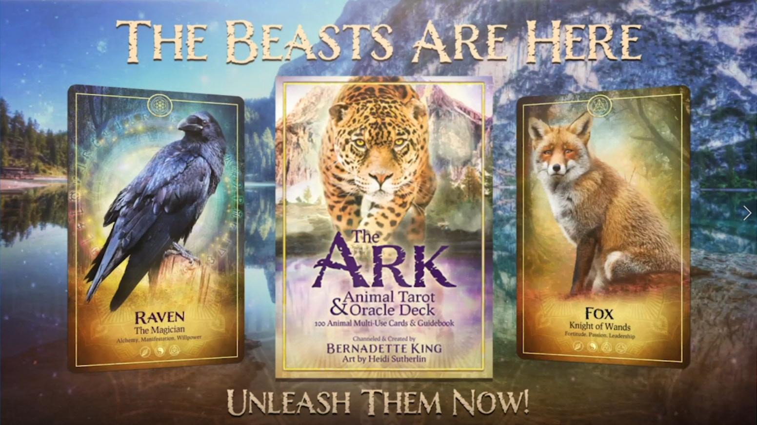 The Ark Animal Tarot Oracle Deck By Bernadette King Kickstarter