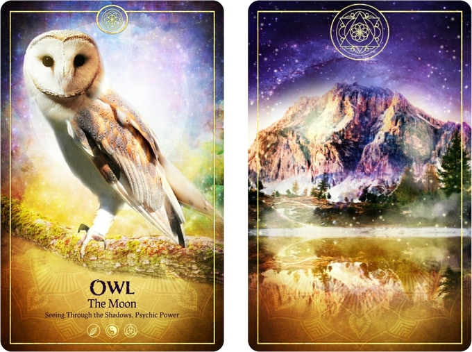 The Moon Tarot Card from The Ark Animal Tarot & Oracle Deck