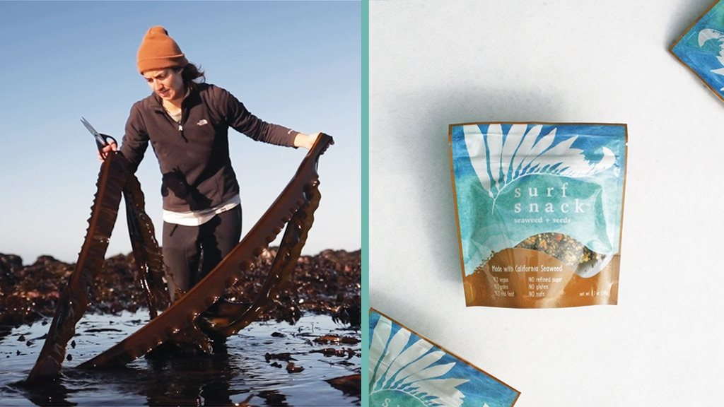 Salt Point Seaweed: Hand-harvested seaweed snacks project video thumbnail