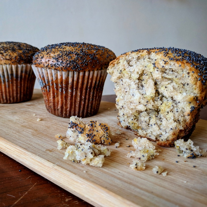 Sourdough-Enriched Lemon Poppy Seed Muffins
