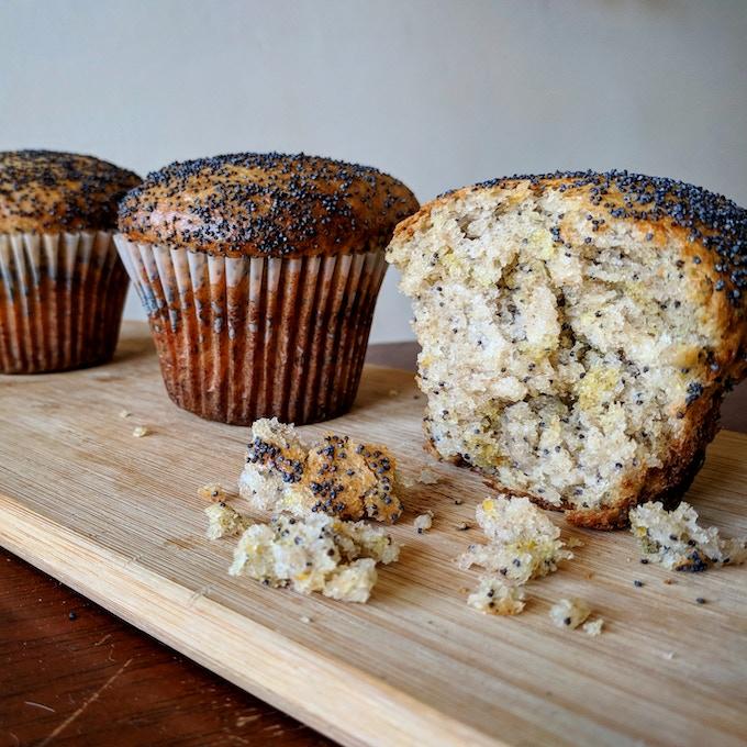 Sourdough-Enriched Lemon Poppy Seed Muffins