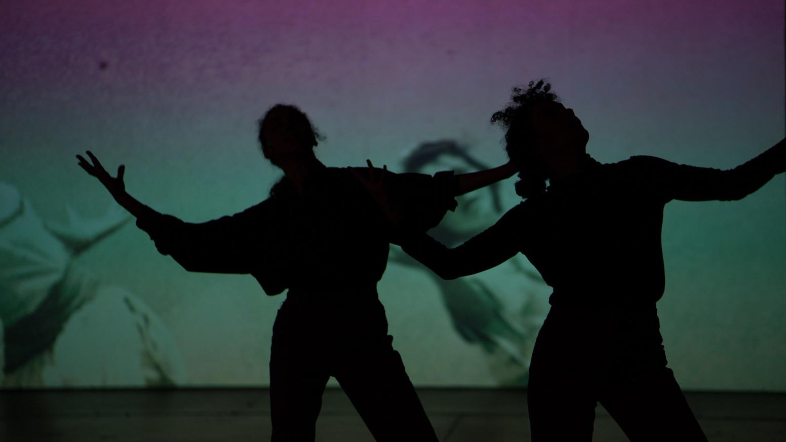Investigating the Instrumentalization of Israeli Folk Dance