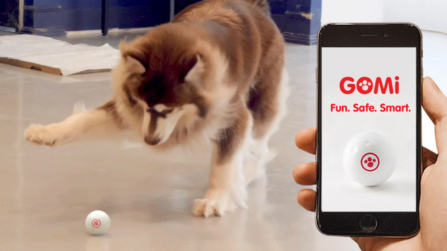 GOMI: The Interactive Smart Ball for Your Pets by GomiLabs