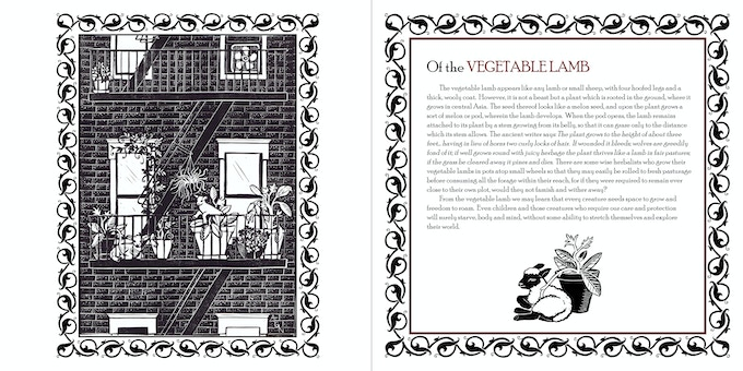 V is for Vegetable Lamb