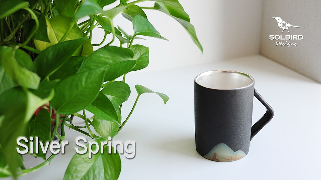 Silver Spring: Silver-lined Porcelain Mug, the perfect gift project video thumbnail