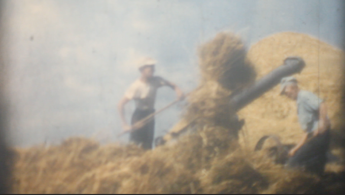 My father, Art Foss, thrashing oats in 1954 Marilla, New York with his one of his neighbors