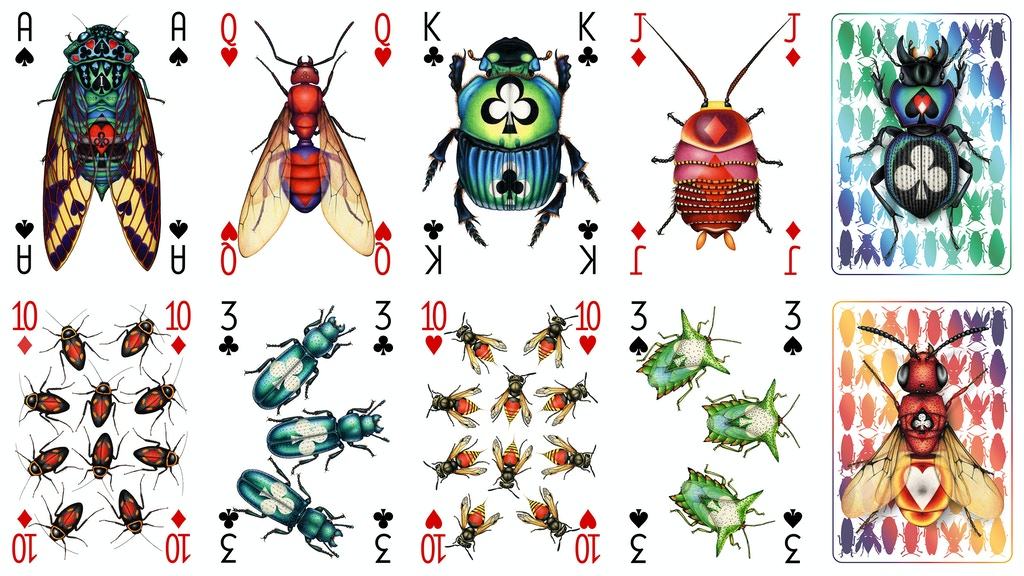 Insecta; a transformations deck of intricate insects project video thumbnail