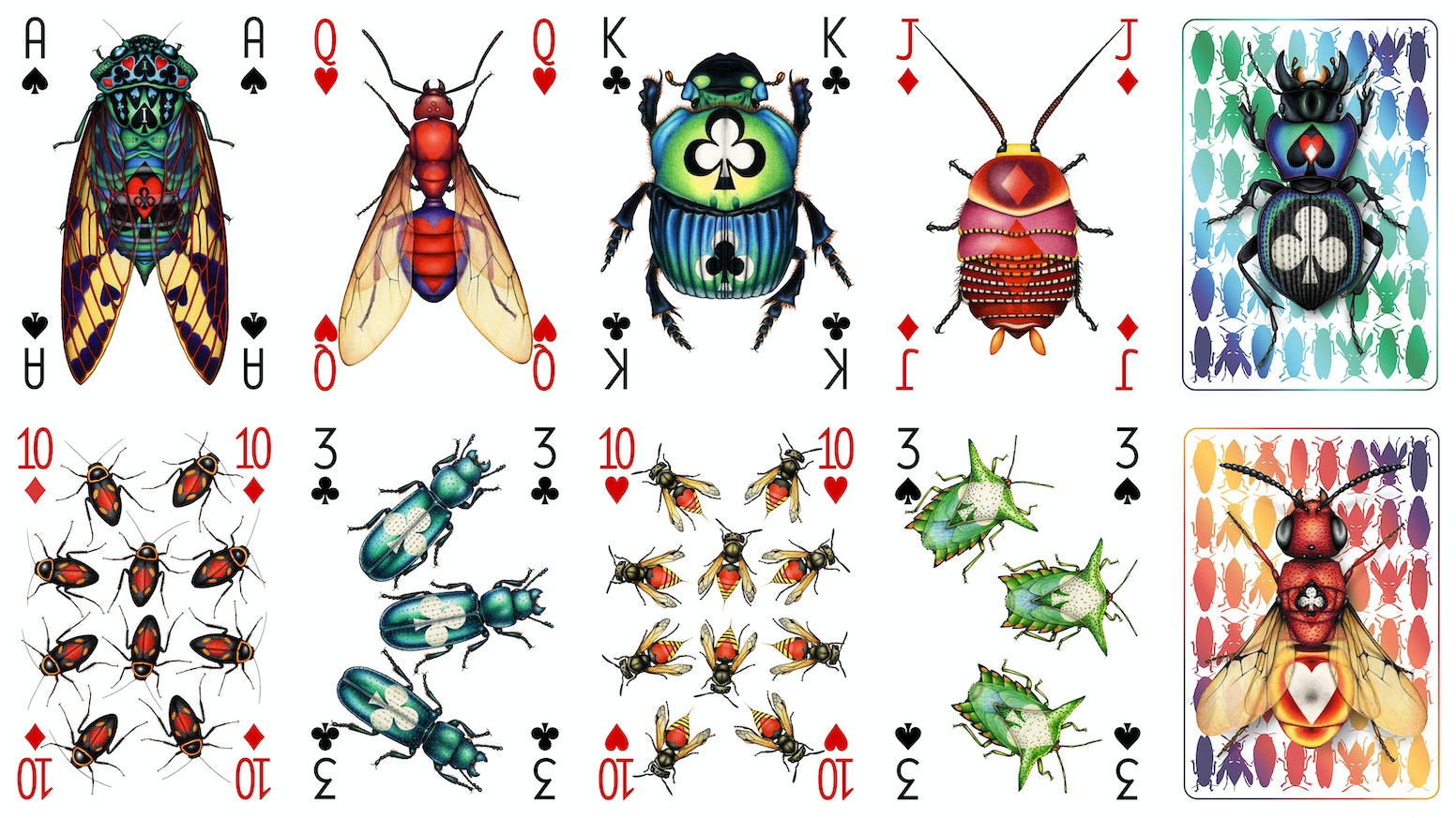 A highly detailed hand-drawn poker deck, imagining what might happen if insects formed a symbiotic relationship with card players