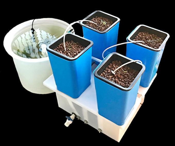 EPIC AquaGrow Mini: Aquaponics for Everyone Using Any Crop