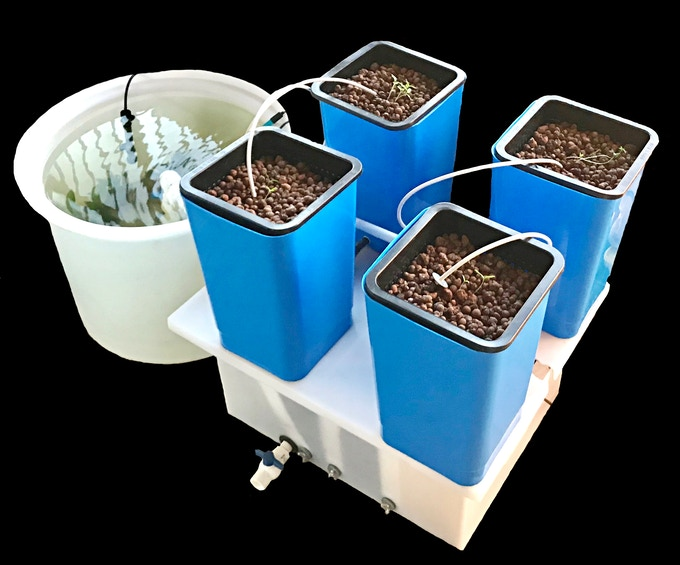 EPIC AquaGrow Mini: Turn Key Aquaponic System for Growers of Any Experience Level ! Purchase Includes EVERYTHING You Need to Start Growing ANY Crop Immediately !