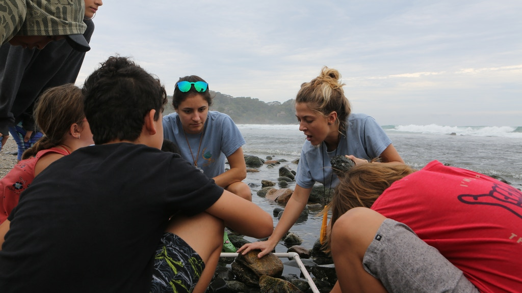 Saltwater Classroom: Ocean Education & Global Collaboration project video thumbnail